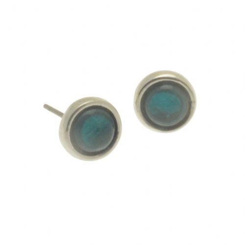 Miss Milly Teal Shell Resin Stud Earrings